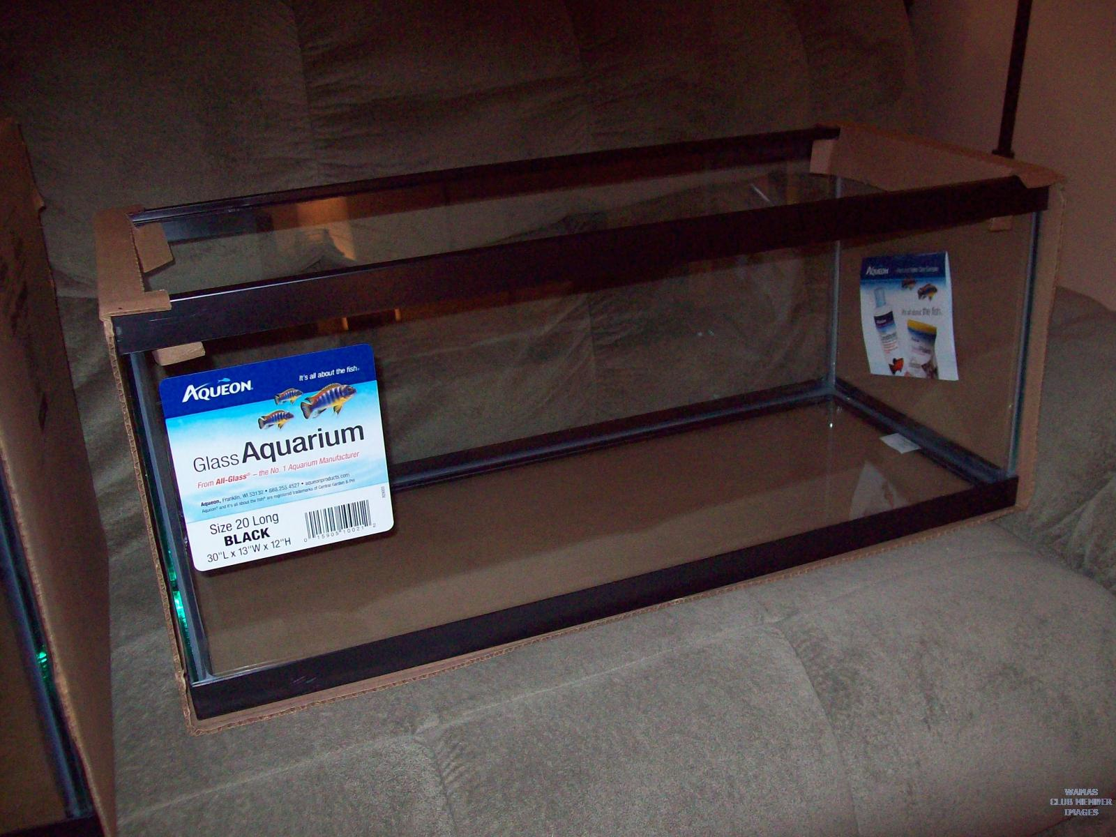 Ryan 39 s new 40g breeder tank dedicated tank build forum for 20 gallon fish tank size