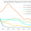 Butterflyfish possible collapse